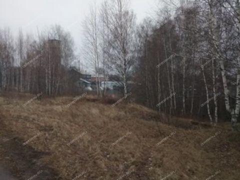 poselok-sitniki-gorodskoy-okrug-bor фото